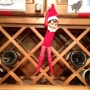 Georgie, our Elf on the Shelf