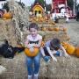#PumpkinPatchProblems